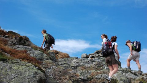Cannon Mountain Hike Updates