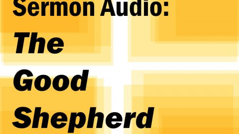 Sermon Audio: The Good Shepherd Lays Down His Life for the Sheep