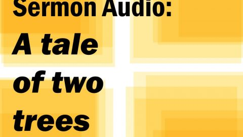 Sermon Audio: A Tale of Two Trees