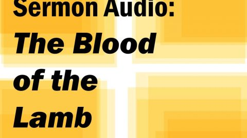 Sermon Audio: The Blood of the Lamb
