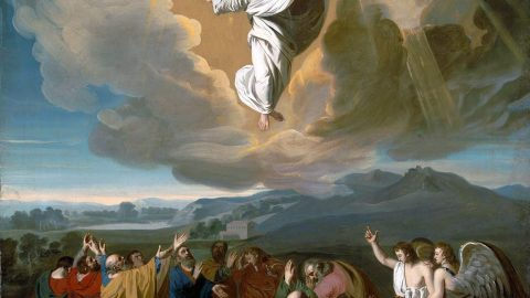 Sermon Audio for Feast of the Ascension
