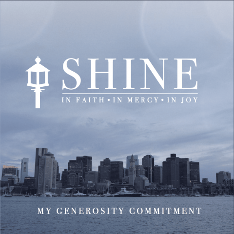 Shine Commitment Card:  How to fill it out
